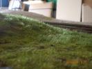 Und südlich des Sägewerks wächst das Gras auch weiter.