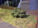 Da genug Büsche da waren, hat auch die Wiese hinterm Sägewerk was abbekommen.