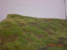 Der Hügel ist begrast.
