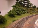 Die Lücke zur Gleistrasse hat sich die Natur hier schon zurückerobert.