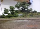 Zwei weitere Bäume sind gepflanzt.