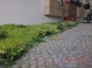 Kleine Büsche am Straßenrand.