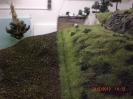 Die Trennstelle mit Grasbewuchs
