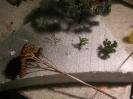 Auch aus Naturmaterialien werden Büsche hergestellt.