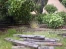 Auch kommen Büschel mit altem Gras hinzu.