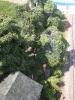 Zweite Fotoreihe vom 22.05.2011.