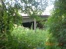 Hinter einem Feld von Brennesseln sieht man die Brücke über die Piesteritz.