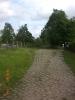 Von Norden her scheint die Straße vor einem Gebüsch zu enden.