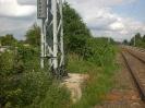 Hinter dem Oberleitungsmast liegt im Gebüsch versteckt die Bachbrücke.