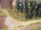 Waldstück zwischen Haltepunkt und Bahnübergang