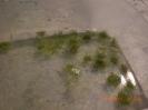 Dann werden die Grasbüschel eingelagert, bis sie gebraucht werden.
